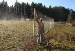 GALLERY_GF-fence6